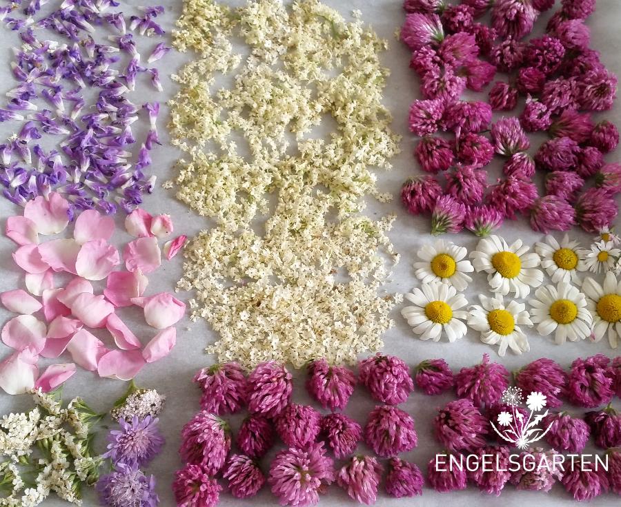 Getrocknete essbare Blüten