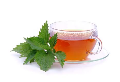 Brennnessel Tee und Tinktur