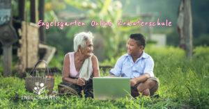 Online Kräuterschule